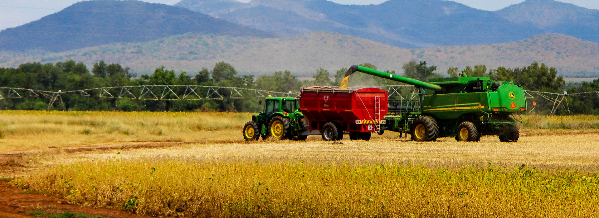 South_Africa_-_Harvesting_-_001